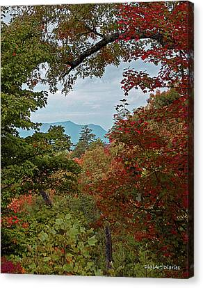 Peeking At The Smokies Canvas Print by DigiArt Diaries by Vicky B Fuller