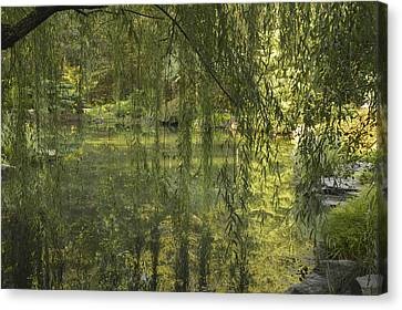 Peeking Through The Willows Canvas Print by Linda Geiger