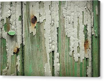 Canvas Print featuring the photograph Peeling 3 by Mike Eingle