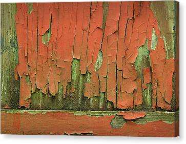 Canvas Print featuring the photograph Peeling 4 by Mike Eingle