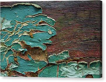 Peeling Canvas Print by Mike Eingle