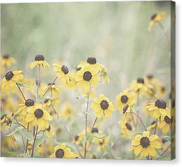 Peeping Canvas Print by Lisa Russo