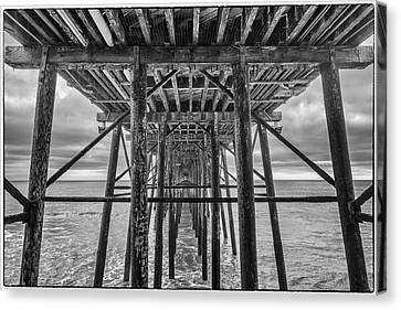 Canvas Print featuring the photograph Peering From Below by Wade Courtney