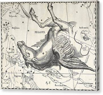 Sky Line Canvas Print - Pegasus by Johann Hevelius