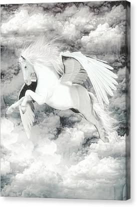 Pegasus Light  Canvas Print by Quim Abella