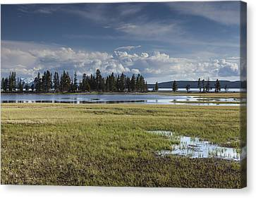Pelican Creek Canvas Print