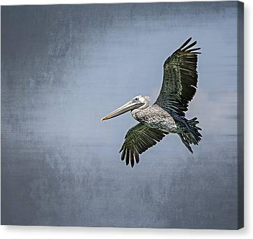 Canvas Print featuring the photograph Pelican Flight by Carolyn Marshall
