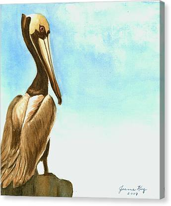 Canvas Print featuring the painting Pelican by Jeanne Kay Juhos