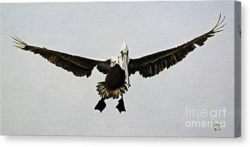 Canvas Print featuring the painting Pelican Landing by Jimmie Bartlett