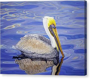 Alcatraz Canvas Print - Pelican  by Manuel Lopez