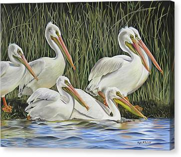 Pelican Parade Canvas Print by Phyllis Beiser