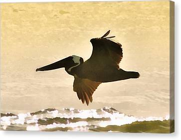 Pelican Patrol Canvas Print by Jim Proctor