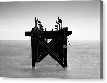 Canvas Print featuring the photograph Pelican Pier - Pass Christian - Mississippi by Jason Politte
