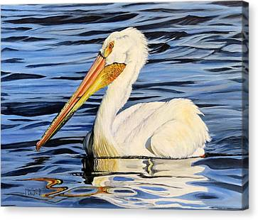 Pelican Posing Canvas Print by Marilyn McNish