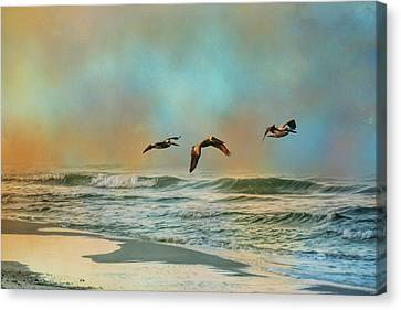 Pelican Trio Canvas Print by Jai Johnson
