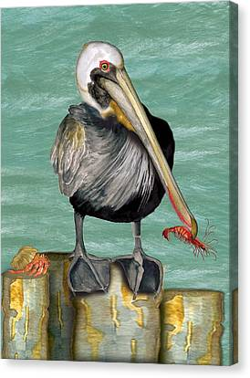Canvas Print featuring the painting Pelican With Shrimp by Anne Beverley-Stamps
