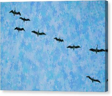 Pelicans' Flight Canvas Print