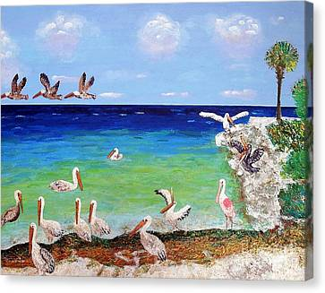 Pelicans Canvas Print by Vicky Tarcau