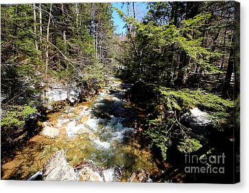 Pemigewasset River At Franconia Notch Canvas Print by Neal Eslinger