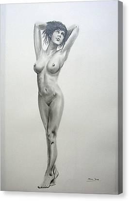 Pencil Nude 14 Canvas Print