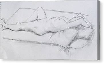 Pencil Sketch 1.2011 Canvas Print by Mira Cooke