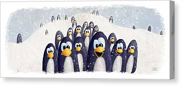 Penguin Winter Canvas Print by David Breeding