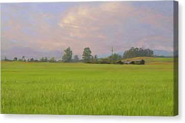 Penngrove Field Canvas Print by Thomas  Hansen