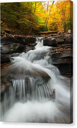 Canvas Print featuring the photograph Pennsylvania by Bernard Chen