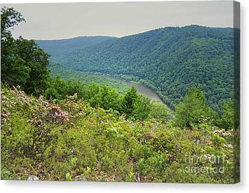 Pennsylvania Mountain Outlook Canvas Print by Andrea Hazel Ihlefeld