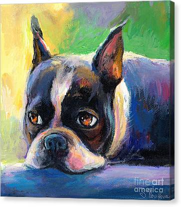 Pensive Boston Terrier Dog Painting Canvas Print by Svetlana Novikova