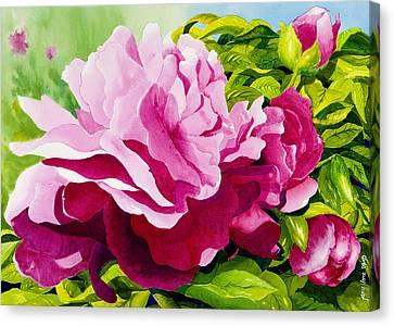 Peonies In Pink Canvas Print by Janis Grau