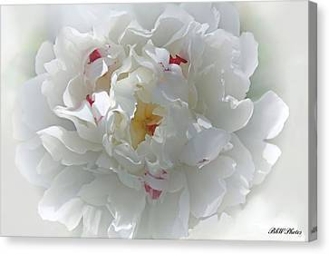 Canvas Print featuring the photograph Peony by Bonnie Willis