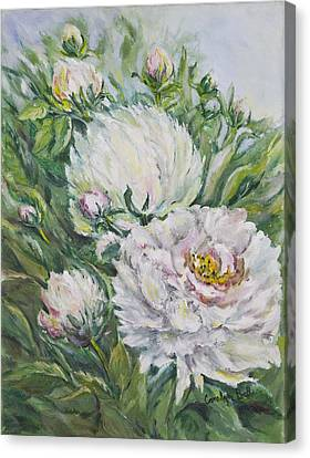 Peony Canvas Print by Carolyn Bell