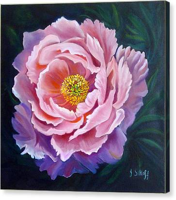 Peony Canvas Print by Janet Silkoff