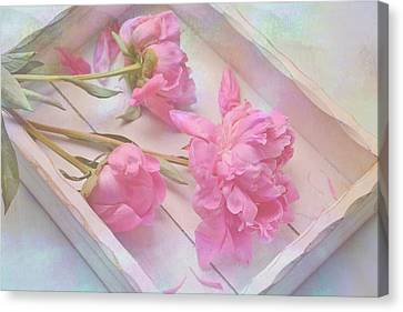 Canvas Print featuring the photograph Peonies In White Box by Diane Alexander