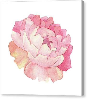 Canvas Print featuring the painting Peony Watercolor  by Taylan Apukovska