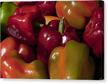 Peppers In The Late Afternoon Canvas Print by Robert Ullmann