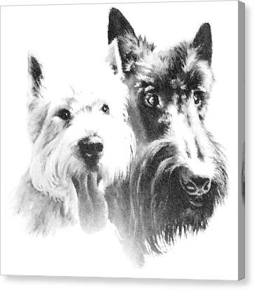 Pepsi And Max Canvas Print by Charmaine Zoe