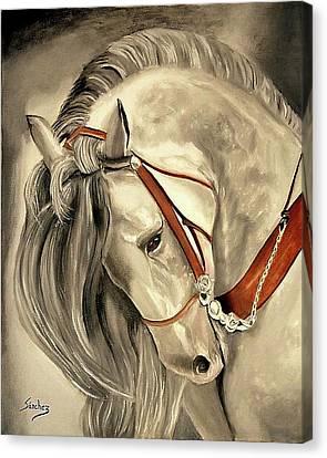 Peralta Andalucian Canvas Print by Manuel Sanchez