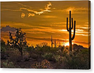 Peralta Arizona Sunset Canvas Print by Dave Dilli