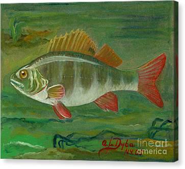 Ryby W Sztuce Canvas Print - Perch by Anna Folkartanna Maciejewska-Dyba