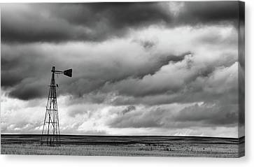 Canvas Print featuring the photograph Perched And Looking by Monte Stevens