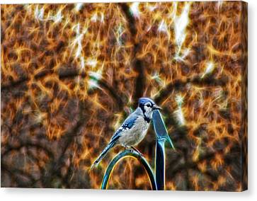 Perched Jay Canvas Print