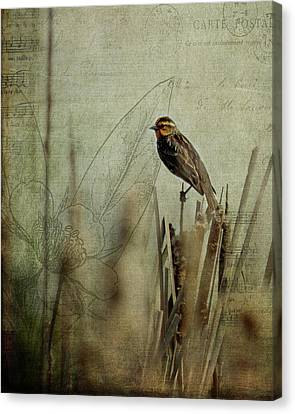 Perched On A Reed Canvas Print