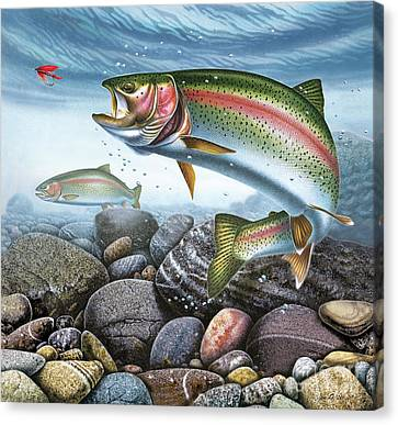 Perfect Drift Rainbow Trout Canvas Print by JQ Licensing