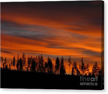 Perfect Evening Canvas Print