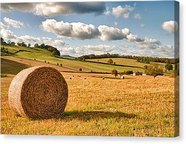Bales Canvas Print - Perfect Harvest Landscape by Amanda Elwell