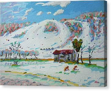 Perfect North Vi Canvas Print by Tom Lohre