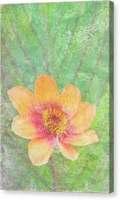 Perfect Peach Canvas Print by JQ Licensing