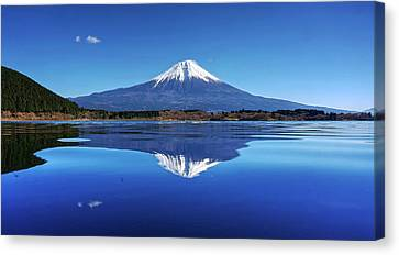 Canvas Print featuring the photograph Perfect Shape, Perfect Blue by Peter Thoeny